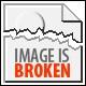 Helicophanta ibaraoensis Gorgeous Extra large!